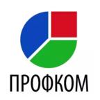 Сеть магазинов отделочных материалов Профком